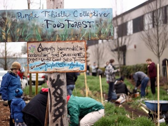 foodforestsign
